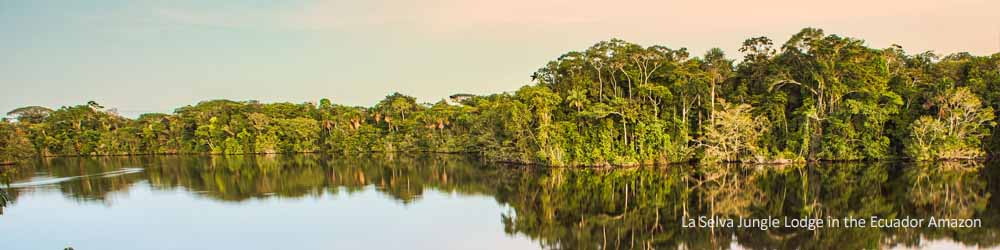 amazon-river-jungle-ecuador