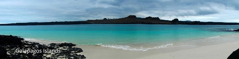 galapagos-islands-ecuador-beach