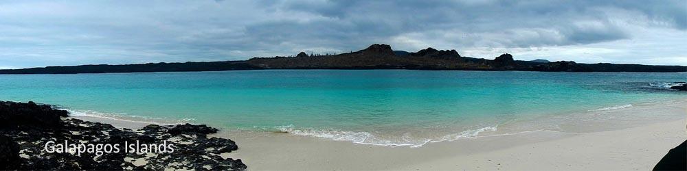 galapagos-islands-ecuador-beach