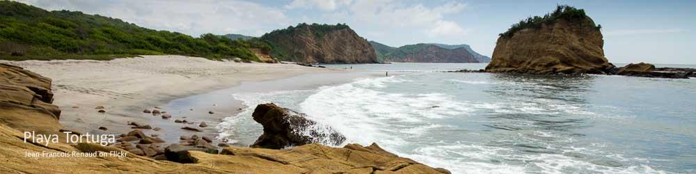 turtle-beach-ecuador-coast